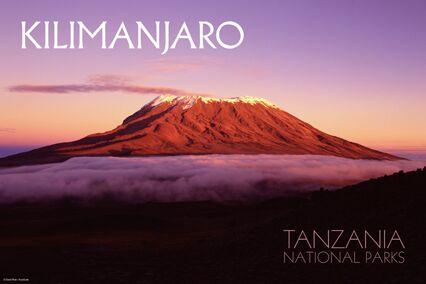 Climbing Kiliamanjaro